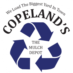 cropped-copelands-favicon-300x300